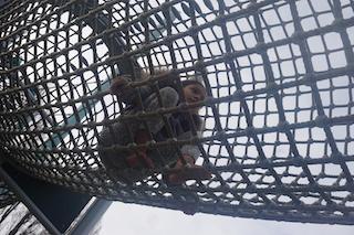 Margaret Mahey playground